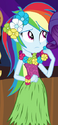 Rainbow Dash hula skirt ID EG2