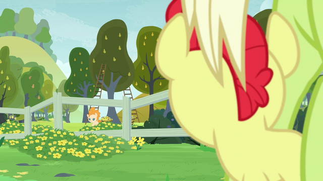 File:Young Bright Mac looking at Pear Butter S7E13.png