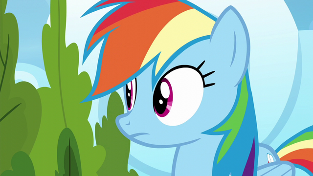 File:Rainbow Dash looks to her right S6E7.png