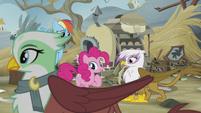 Greta crosses in front of Rainbow, Pinkie, and Gilda S5E8