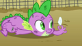 Spike fighting for a feather S1E24.png