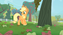 Applejack looks at the rotten apples S4E07