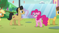 "Pinkie ""Oh wait, that's me"" S5E24.png"