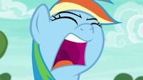 """Rainbow Dash shouts """"come on!"""" again S6E18"""
