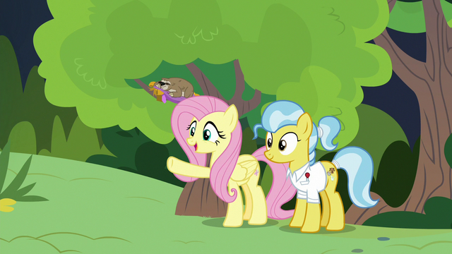 """File:Fluttershy """"even better than you imagined!"""" S7E5.png"""