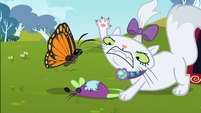 Opalescence and the butterfly S2E07