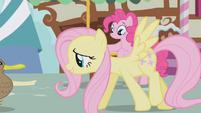 Pinkie Pie observes Fluttershy S1E05