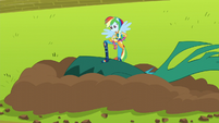Rainbow stands victorious over the downed vine EG3
