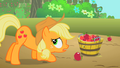 Applejack putting apples into a bucket S2E13.png