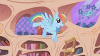 "Rainbow Dash ""I got the ticket"" 1 S01E03"