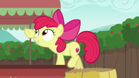 Apple Bloom trying to remove a cart fringe S6E14