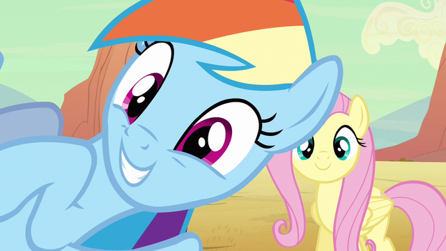 File:Rainbow Dash overly happy S2E14.png