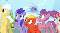 Academy trainees excited to meet Rainbow Dash S6E24