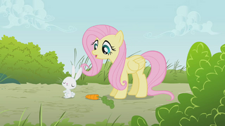 Fluttershy with Angel bunny in S1 E7