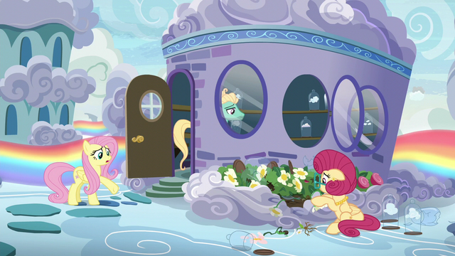 "File:Fluttershy ""can't you see what you're doing?!"" S6E11.png"