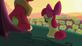 "Apple Bloom ""I know you like to win and all"" S5E17.png"