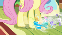 Breezies pleading to Fluttershy S4E16