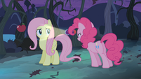 Fluttershy looks through Pinkie's light S04E07