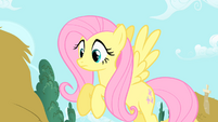 "Fluttershy to Twilight ""The Everfree Forest?"" S1E17"
