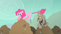 Pinkie Pie Spot elastictail pull S01E19.png