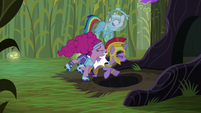 Pinkie Pie bumps Twilight into the hole S5E21