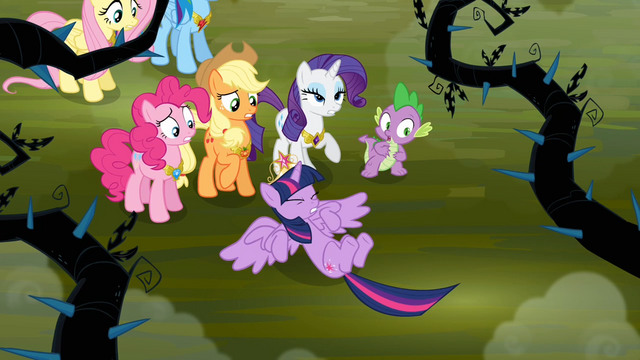 File:Twilight falls in front of her friends S4E02.png