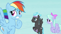 Rainbow Dash and Pegasi worried S4E16.png