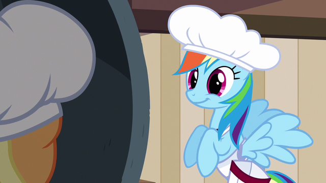 File:Rainbow Dash what about S2E14.png