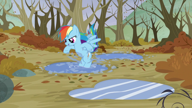 File:Rainbow smashes the ice on the water puddle surfaces S5E5.png