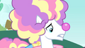 Closeup of clown stallion S4E23.png
