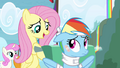 Fluttershy takes care of Rainbow S4E10.png