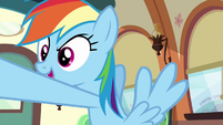 "Rainbow Dash ""just spend the whole ride"" S6E18"