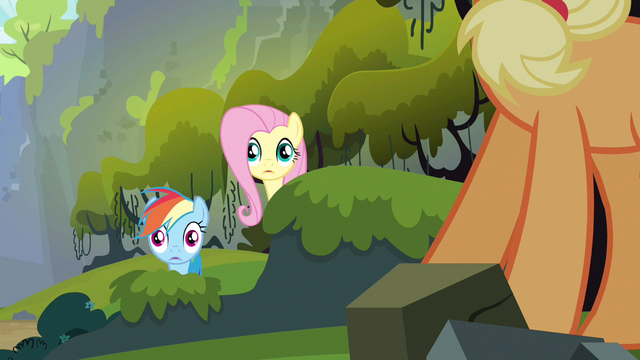 File:Rainbow Dash & Fluttershy wide eyes S3E9.png