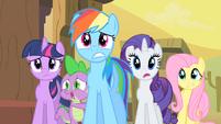 Twilight, Rainbow Dash, Rarity, Fluttershy, Spike Worried S1E21