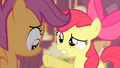 Apple Bloom pointing at Scootaloo S4E05.png