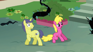Comet Tail and Cherry Berry scared S4E02