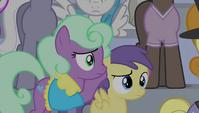 Earth pony mare covers Princess Erroria's ears S4E24