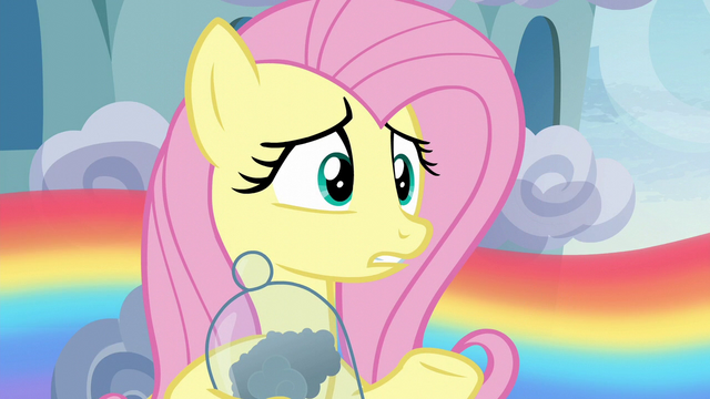 "File:Fluttershy ""since before you were born"" S6E11.png"