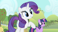 Rarity 'Good choice' S4E07