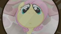 Fluttershy seen through wide-angle lens S7E5