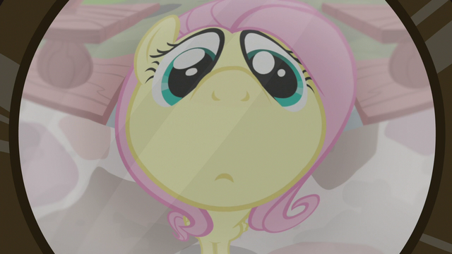 File:Fluttershy seen through wide-angle lens S7E5.png