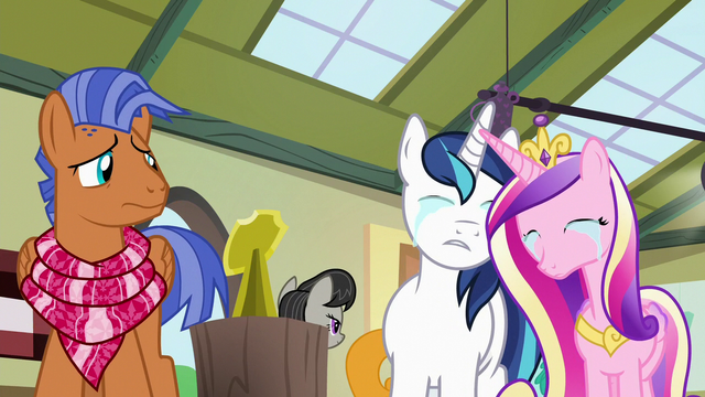 File:Shining Armor and Cadance crying together S7E3.png