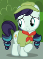 Coloratura filly ID S5E24.png