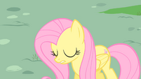 Fluttershy sad S01E22