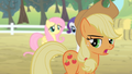 Applejack '...so they don't destroy the rest of my orchard' S4E07.png
