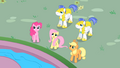 "Fluttershy ""come down from there"" S01E22.png"