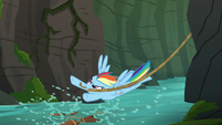 Rainbow Dash with rope in her teeth S6E13