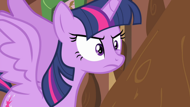 """File:Twilight exasperated """"NO!"""" S4E11.png"""
