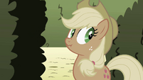 Applejack claims she didn't notice anything strange about Pinkie S2E01