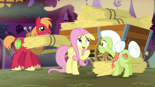 "File:Fluttershy ""you do seem to have quite a lot"" S5E21.png"